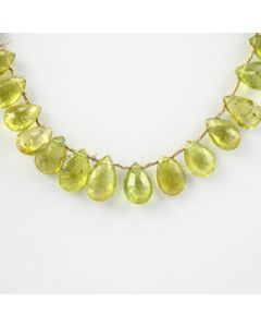 9.80 to 12.50 mm - 1 Line - Tourmaline Drops - 64.45 carats (ToDr1035)