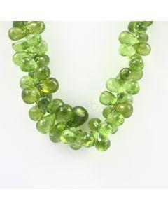 11 to 12 mm - Medium Green Peridot Faceted Drops - 425.00 carats (PDr1021)