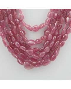 Pink Sapphire Tumbled - 6 Lines - 644.45 carats - 13 to 18 inches - (PnSTuB1001)