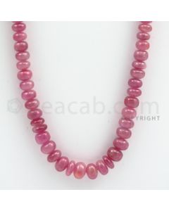 Pink Sapphire Roundel Beads - 1 Line - 286.00 carats - 21 inches - (PnSRoB1015)