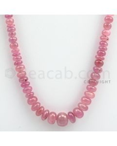 Pink Sapphire Roundel Beads - 1 Line - 121.05 carats - 19 inches - (PnSRoB1008)