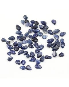 6.20 x 4.80 mm to 8.30 x 5 mm - Dark Blue Sapphire Leaf Shape - 71 Pieces - 48.92 carats (SCar1048)