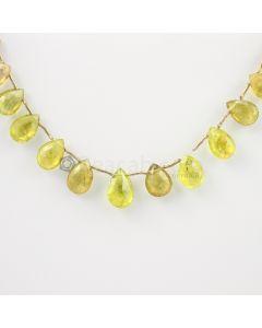 10 to 13 mm - Medium Yellow Tourmaline Drops - 40.50 carats (ToDr1072)