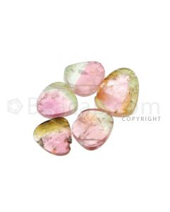5 pcs - Watermelon (Bi-Color) Tourmaline Slices - 5.05 cts - 6.8 x 6.8 x 2.5 mm to 9.5 x 7.2 x 2 mm (TOUSL1082)