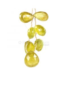 7 Pieces - Yellow Tourmaline Faceted Drops - 74.00 cts - 15 x 10.5 mm to 16.5 x 14.5 mm (TFD1287)