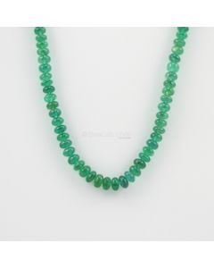 5 to 6.50 mm - 1 Line - Emerald Gemstone Smooth Beads - 133.38 carats (CSNKL1085)